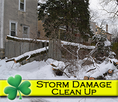 Storm Damage Clean Up PA